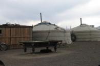 mongolia77